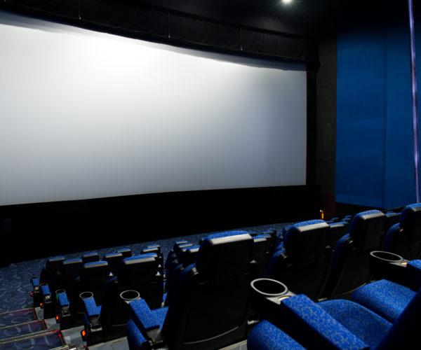 ecran tendu sur cadre aluminium Cinewalk Multivision