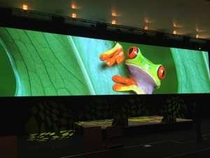 Ecran De Projection Multivision Screens